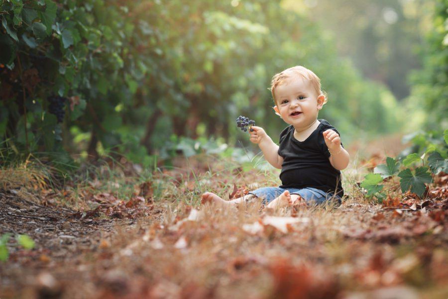 Bébé mignon dans la vignes